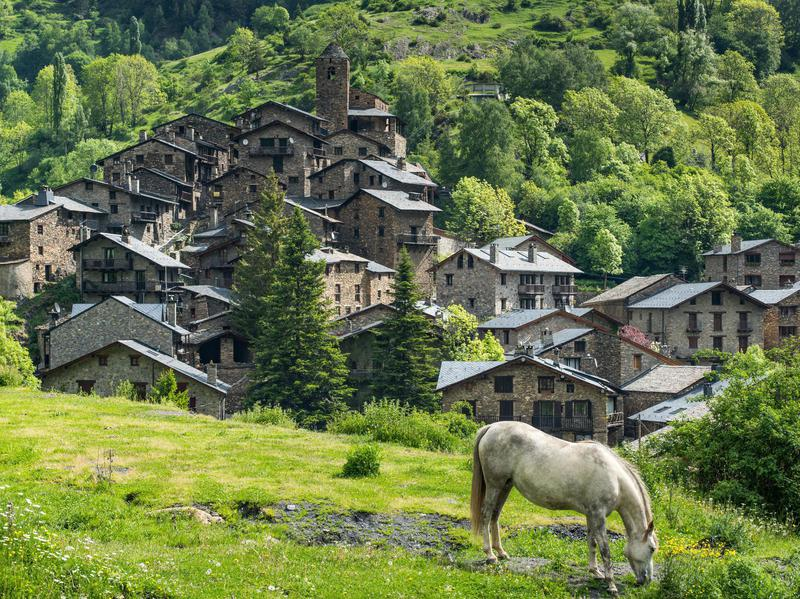 A horse grazing in front of a Pyrenees village in Andorra