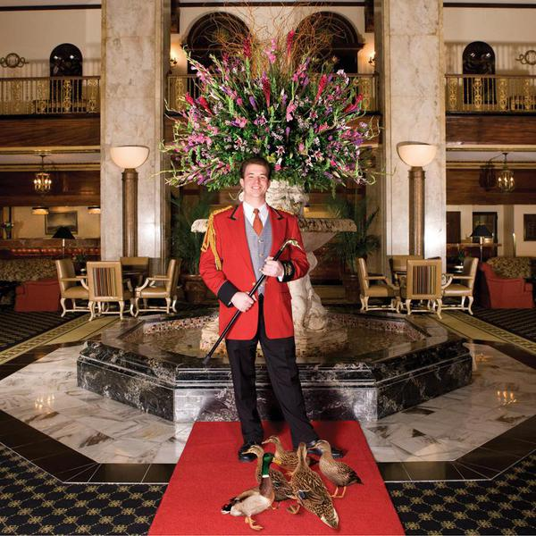 Duckmaster at The Peabody