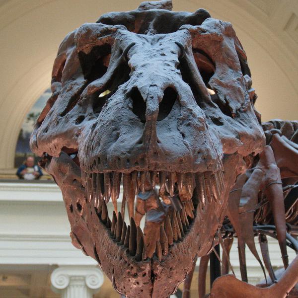 World's Best Dinosaur Attractions