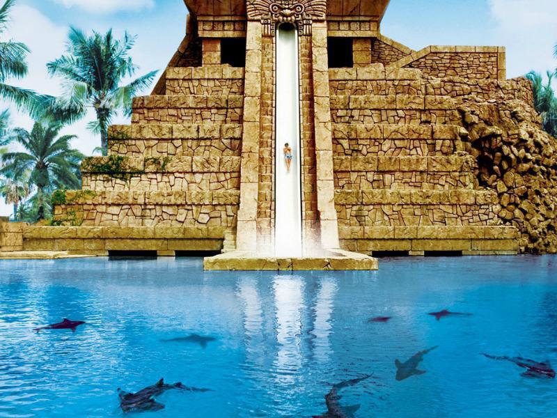 Los verdaderamente atrevidos disfrutarán de este parque, que deposita los deslizadores de agua en una laguna con tiburones.