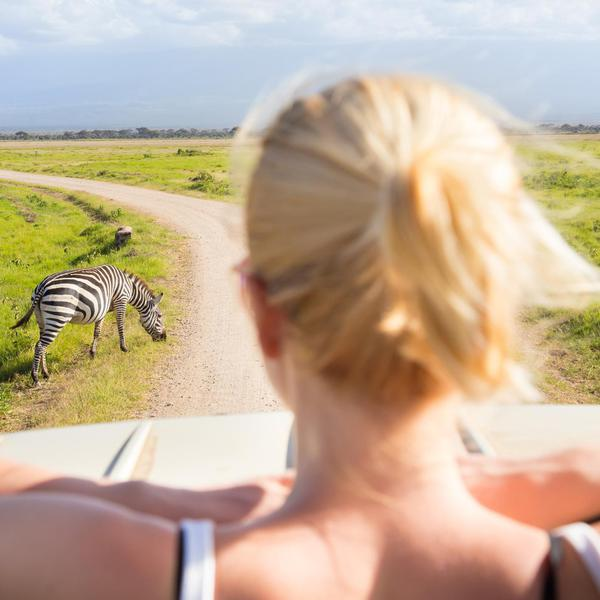How to Have the Ultimate Self-Guided Safari in South Africa