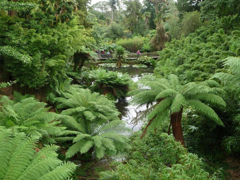The Lost Gardens of Heligan was forgotten for nearly 80 years.