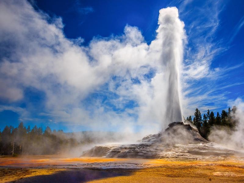 Yellowstone National Park impresses most visitors, but apparently not all.