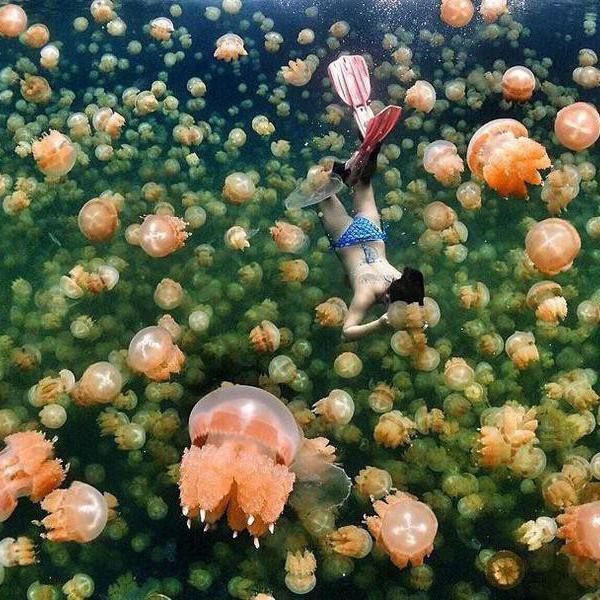 Most Surreal Places to Go If You Love Water