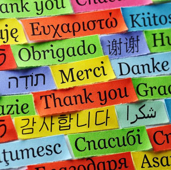 How to Master a New Language