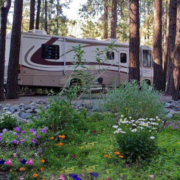 Best RV Parks to Live Out Your Vanlife Dreams
