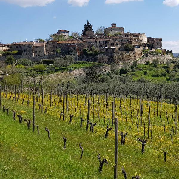 28 Best Wineries in Europe