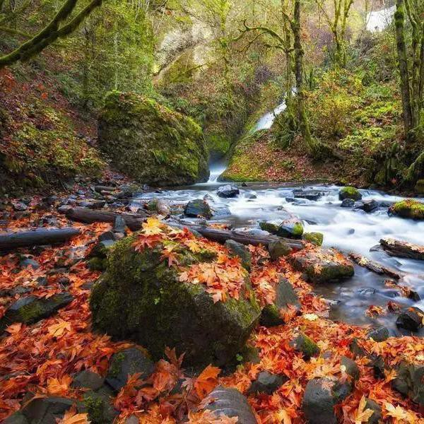 Where to See Beautiful Fall Foliage in North America