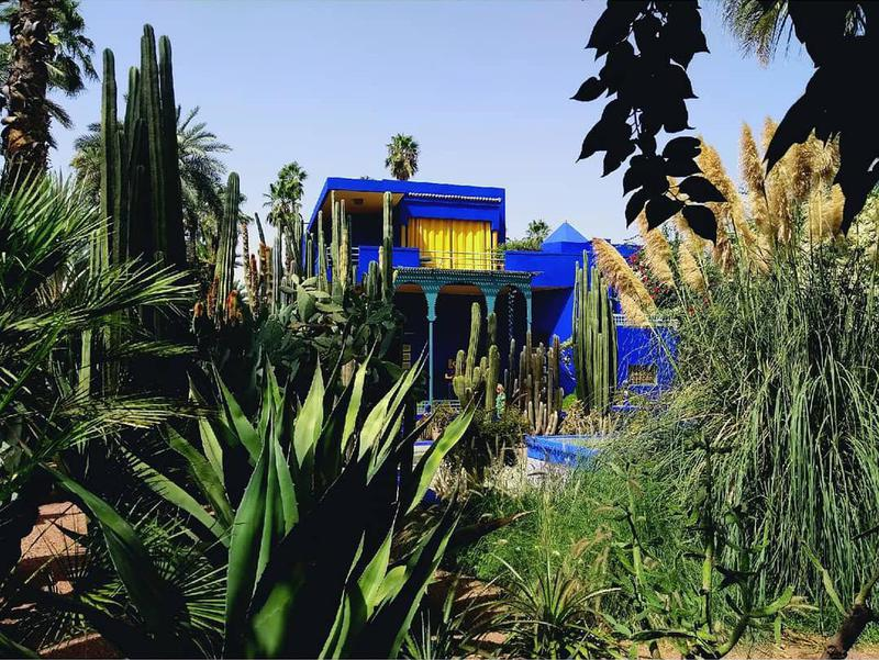 Jardin Marjorelle was created by French painter Jacques Majorelle, who first visited Morocco in 1917