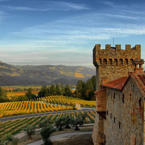 25 Beautiful Vineyards of the World (and How to Buy Their Wines)