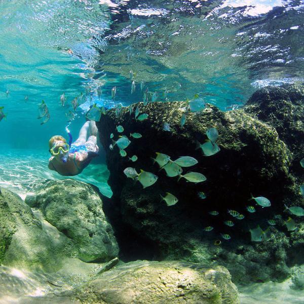 25 Best Snorkeling Spots in the World