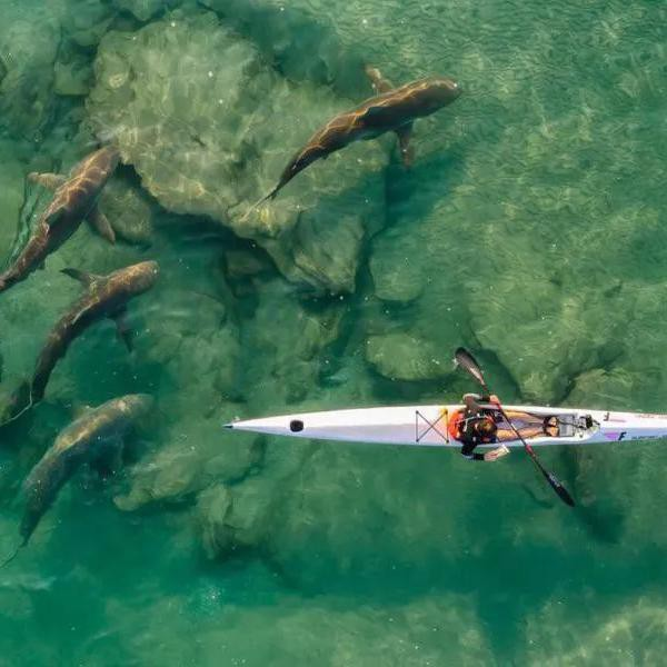 These 2021 Drone Photos Are Absolutely Amazing