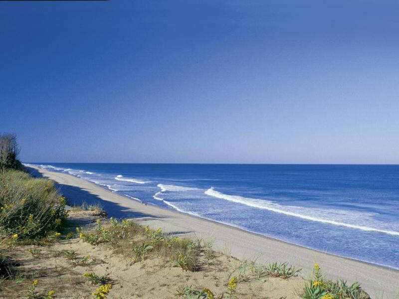 Cape Cod is rife with stunning beaches. Coast Guard Beach is among the best.